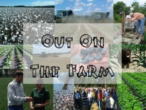 outonfarm