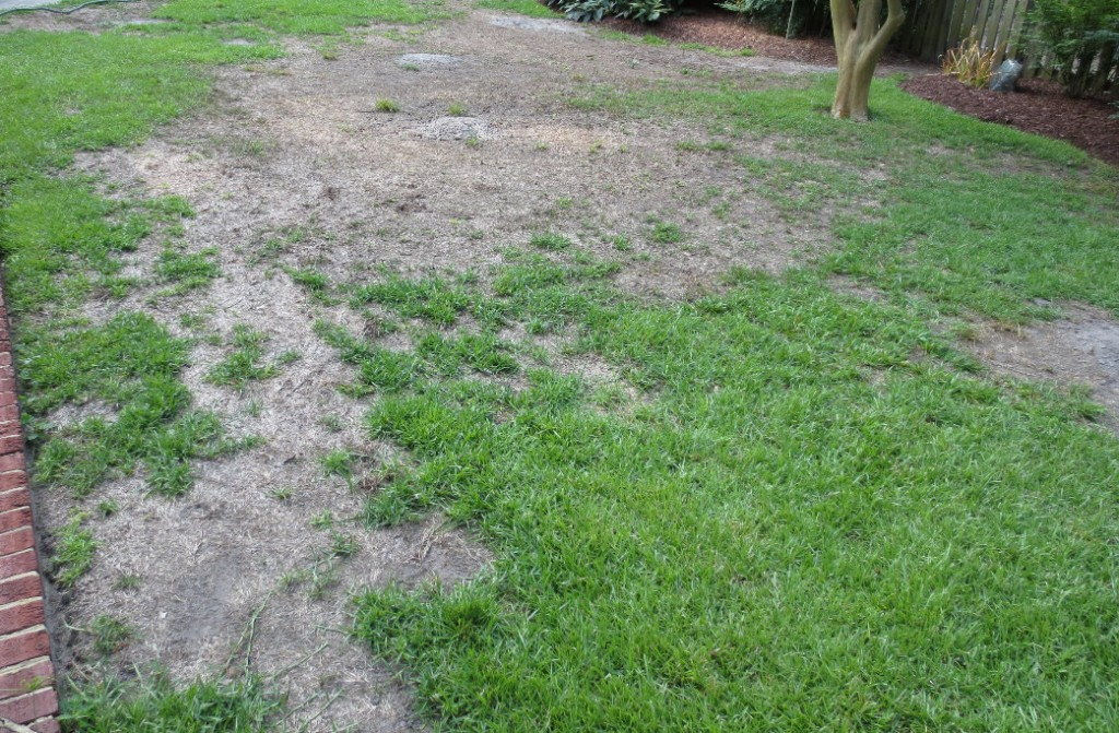 Appling County Crop E News Spring Lawn Care