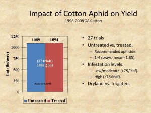 Impact of Cotton Aphid on Yield