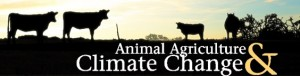 aacc cows logo