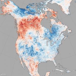temp anomaly map 8-8-2014