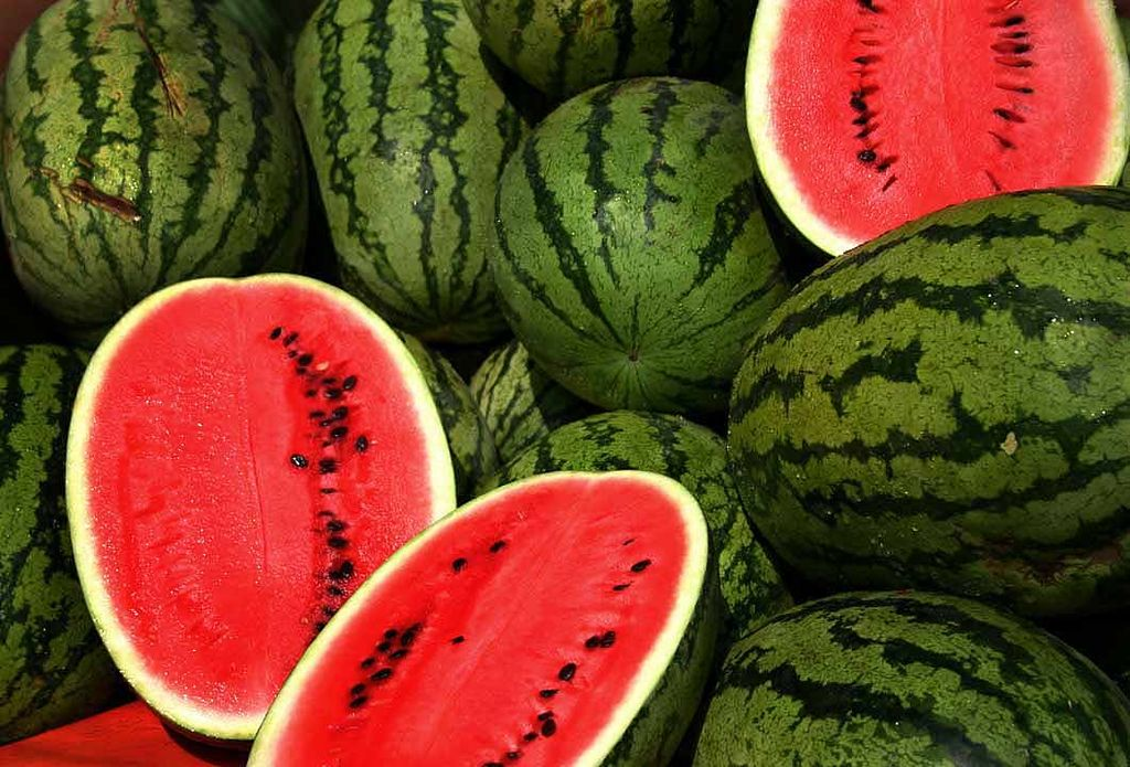 Georgia S Watermelon Season Begins Climate And Agriculture In The Southeast