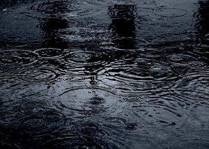 raindrops on puddle commons