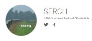 serch 3 logo