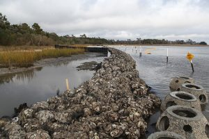 Example of living shoreline installation. Source: U.S. Marine Corps photo by Pfc. Jackeline M. Perez Rivera