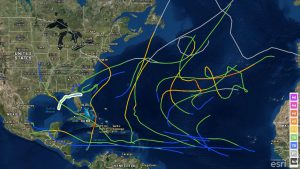 2012 Atlantic hurricane tracks, with Debbie highlighted in white.  Debbie was the next earliest D storm.  Source: National Hurricane Center via WunderBlog