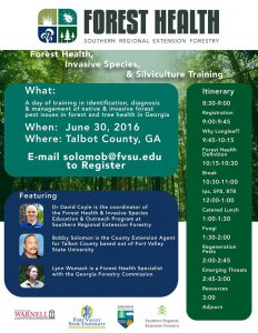 forest health june 30