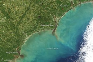 Plumes of sediment entering the ocean following flooding from Hurricane Matthew. Source: NASA