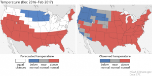 How did NOAA's winter forecast compare to the observations?