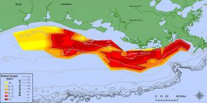 Largest-ever dead zone in Gulf of Mexico