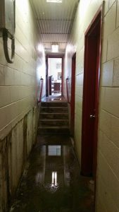 Dairy Hallway 2