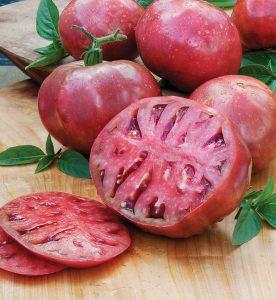 Combating Common Tomato Problems