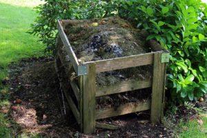 Let's talk composting