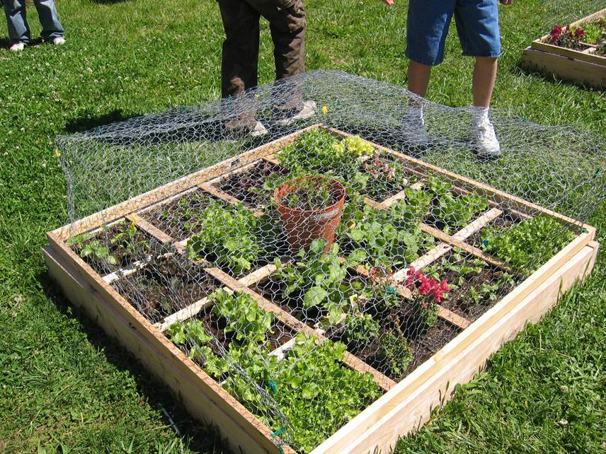 glenvar raised bed