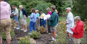 tour of VWCC Arboretum
