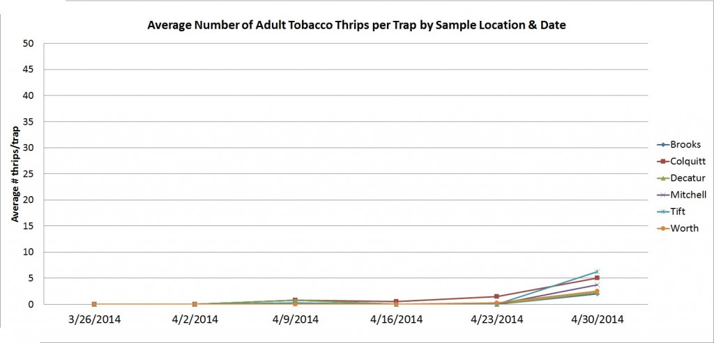 Thrips graph 4-30-2014