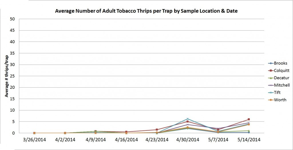Thrips graph 5-14-2014