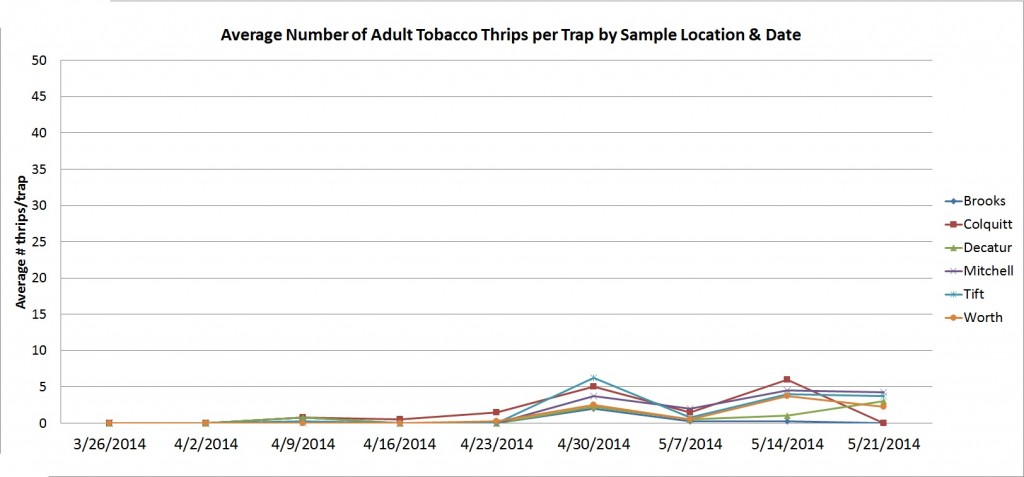 Thrips graph 5-21-2014
