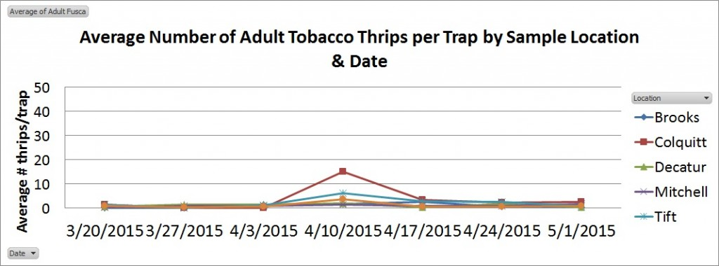 Thrips Graph 5-1-15