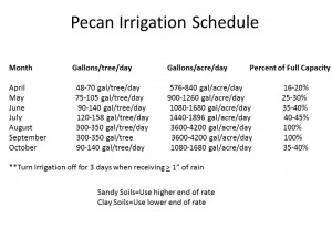Pecan Irrigation Schedule
