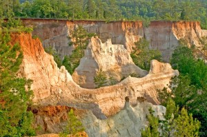Scenic view of Providence Canyon