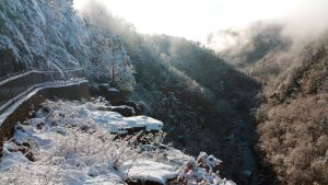 snow on overlook at Tallulah Gorge State Park