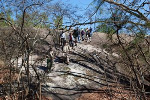 Panola Guided Hike